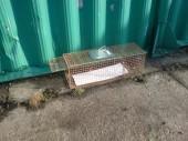 Instalace odchytového sklopce na kočky